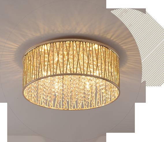 Indoor Ceiling Lights
